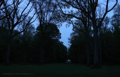 Twilight by wiebkerost