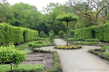 Herbary Schloss Berge by wiebkerost