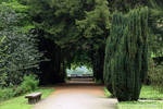 Green Portal by wiebkerost