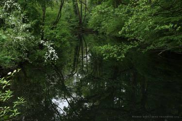 Dark Water by wiebkerost