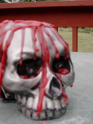 Skull Bookend by CierraGLGates