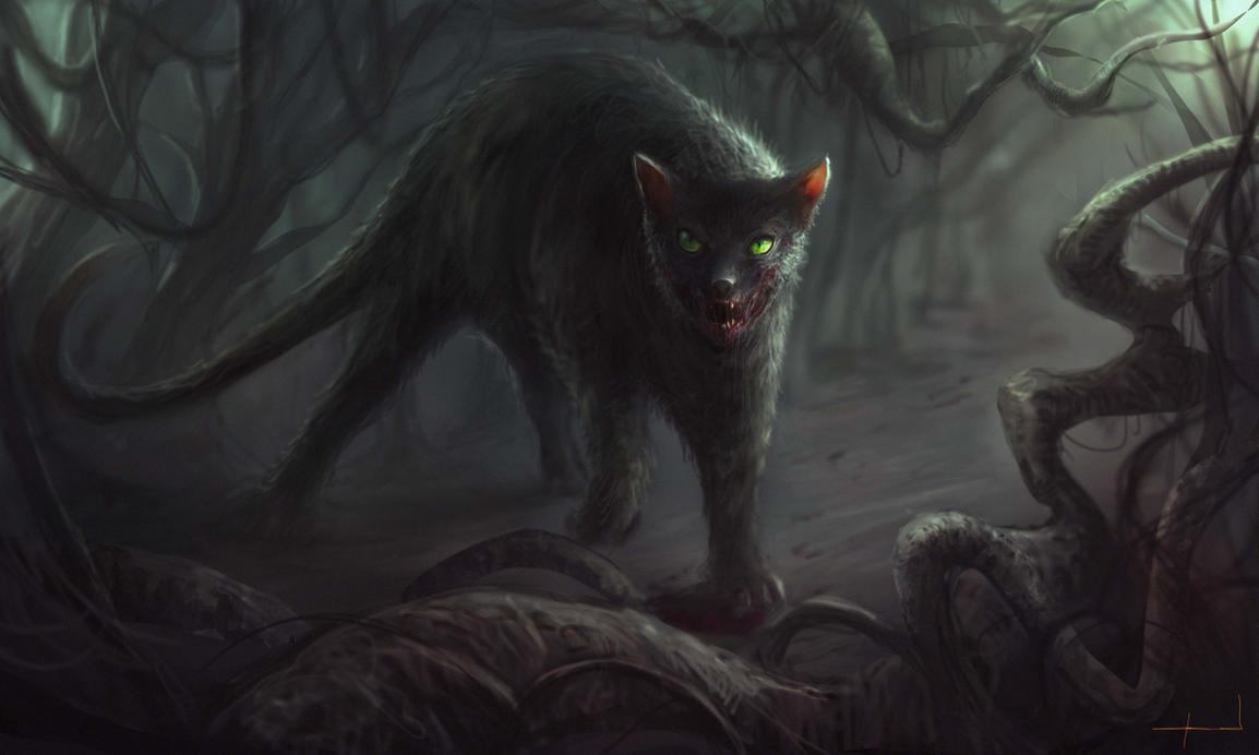 Black Cat by Darkcloud013