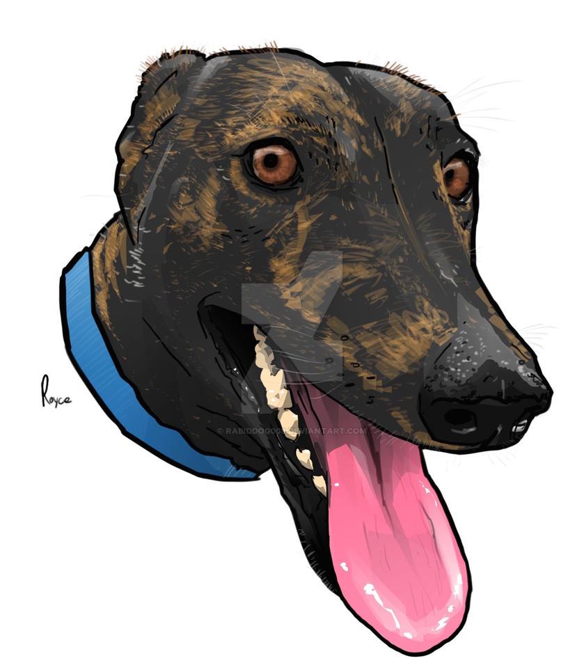 Landy the Greyhound by RabidDog008