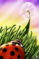 Ladybug Breakfast