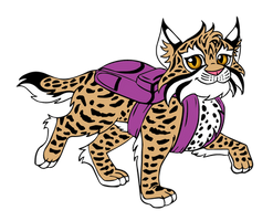 Bobcat wearing a Backpack