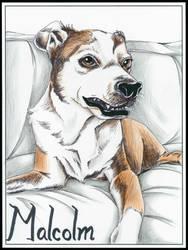 Pet Caricature - Malcolm by TessandraFae