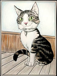 Pet Caricature - Cat with Piano Collar by TessandraFae