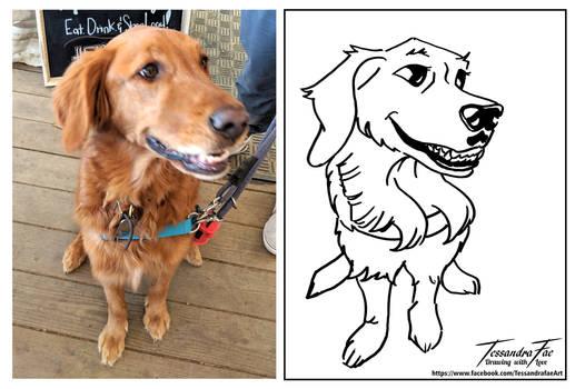 Pet Caricatures - Labrador
