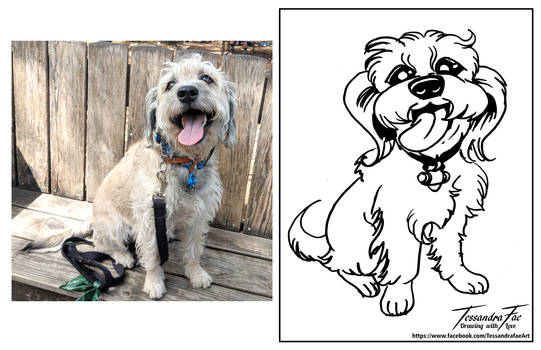 Pet Caricatures - Pup1