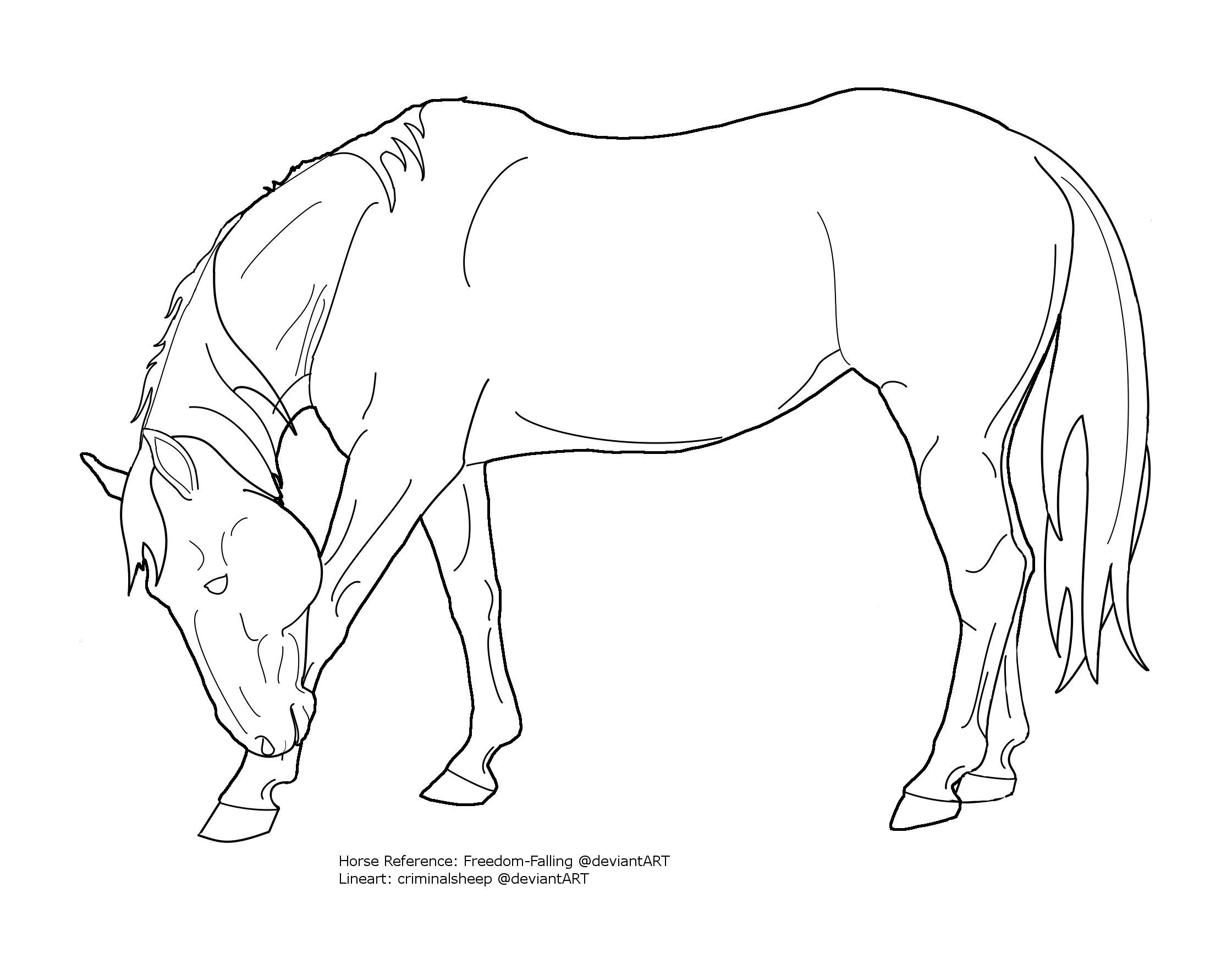 Line Drawing Of Horse : Bowing horse lineart by criminalsheep on deviantart