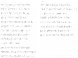 Ragnarok - 16-runers futhark