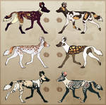 African Wild Dog Adoptables [CLOSED]