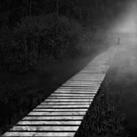 The platform by Kleemass