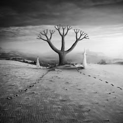 Eden by Kleemass