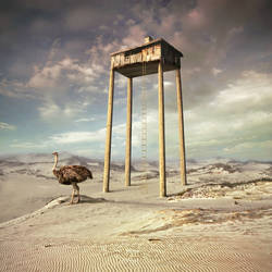 House of Emu by Kleemass