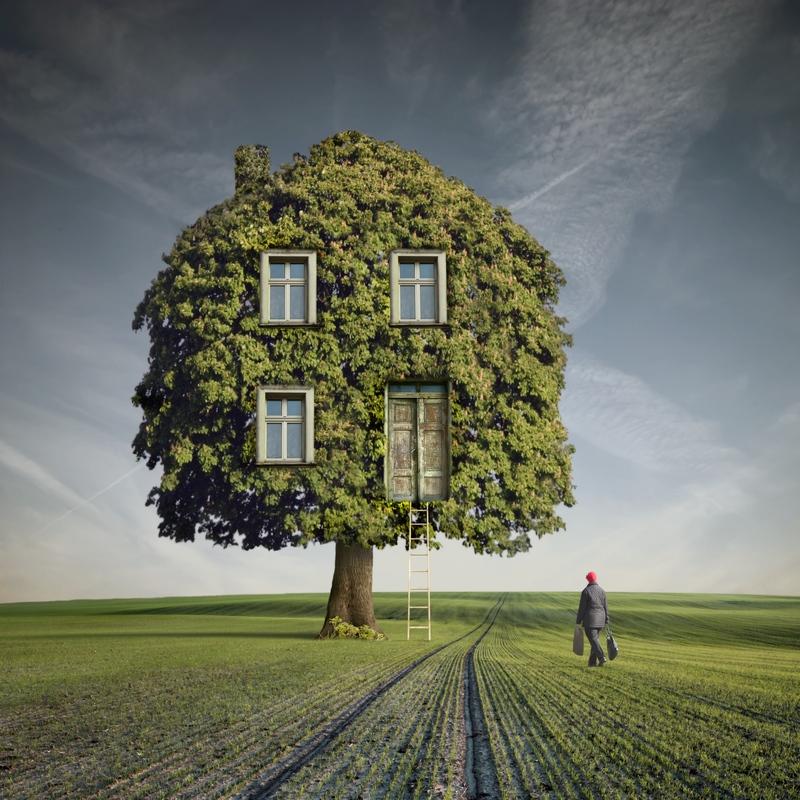 Wooden House by Kleemass