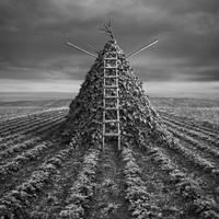 Pyramid by Kleemass