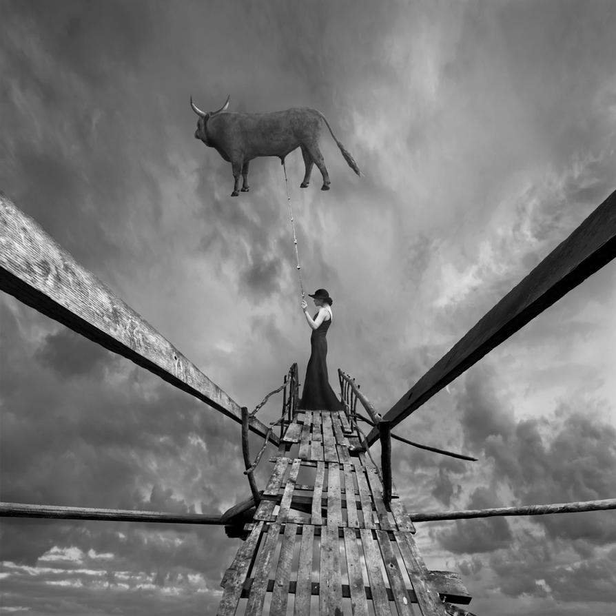 Bull by Kleemass