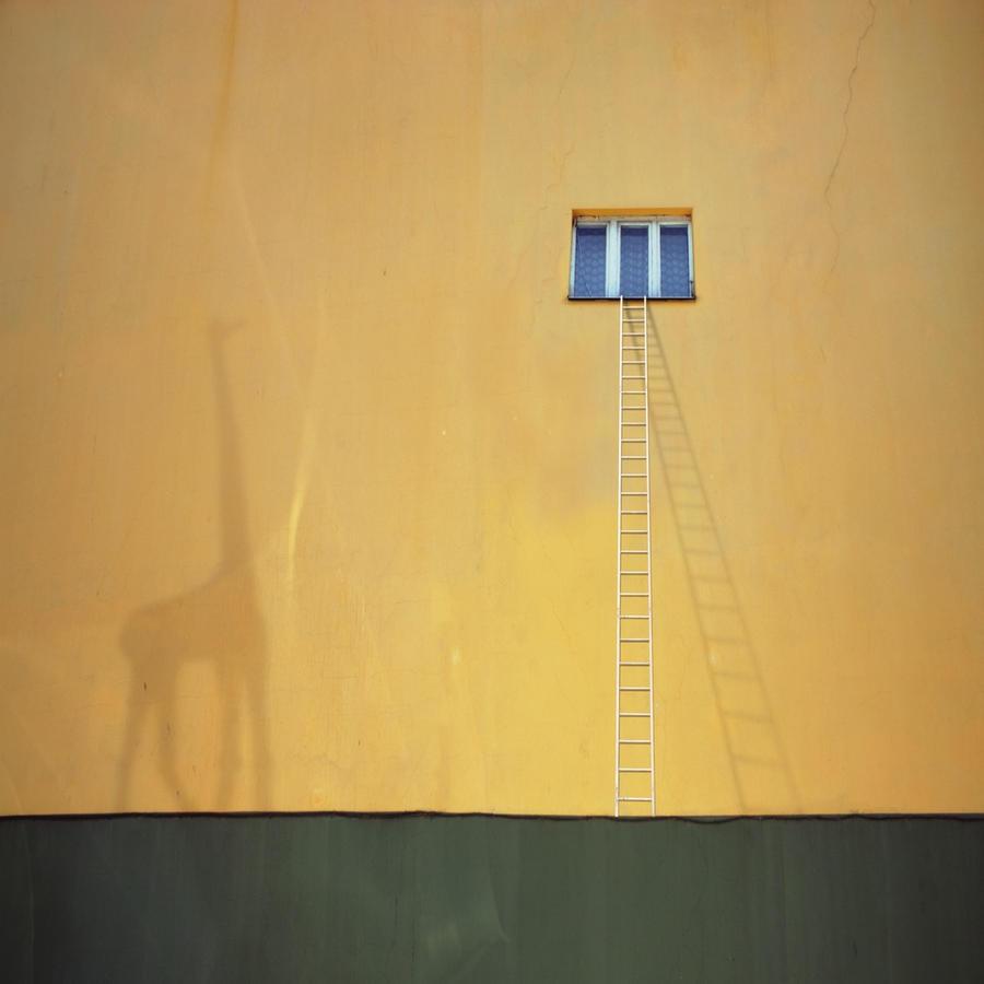 Giraffe by Kleemass
