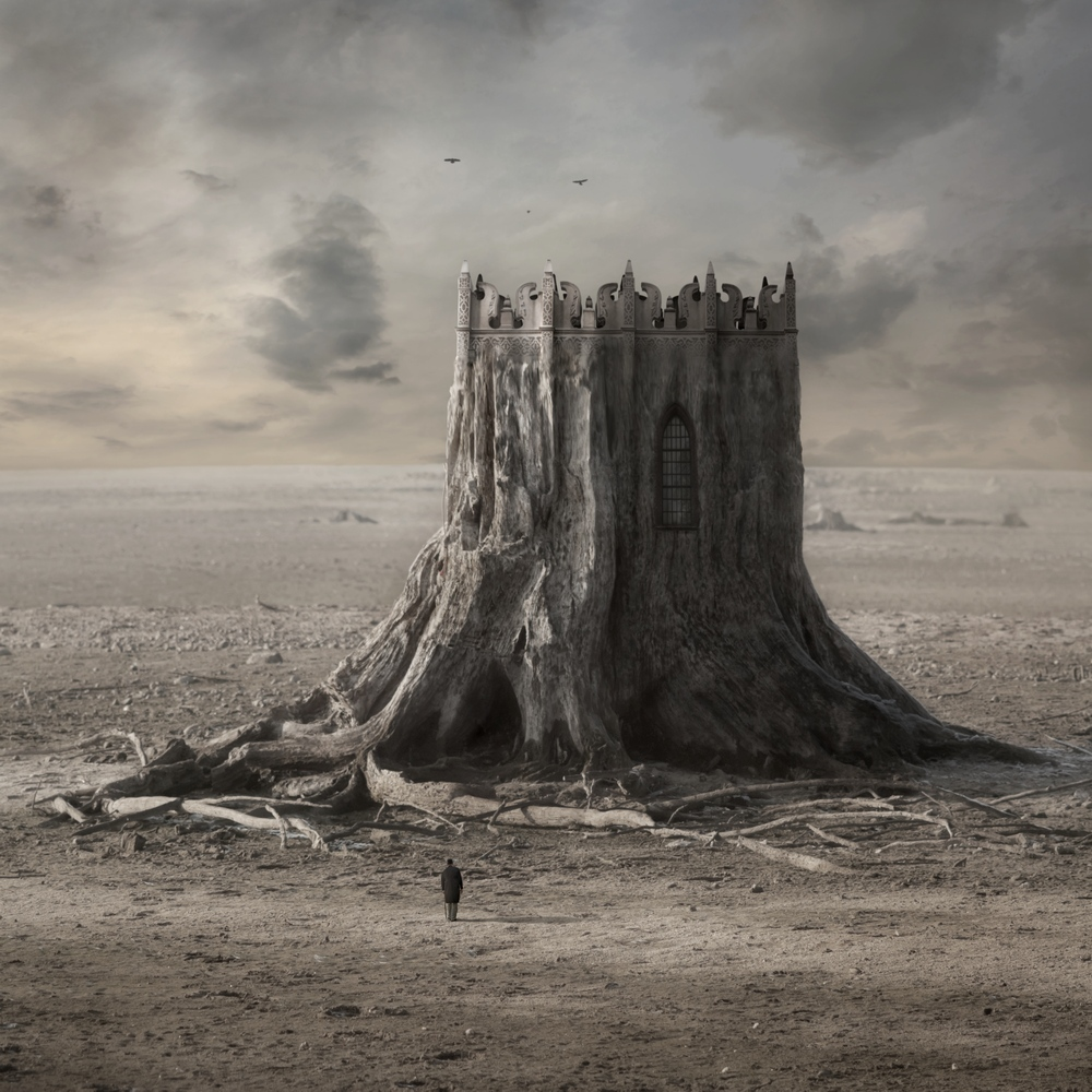 Wooden Castle by Kleemass