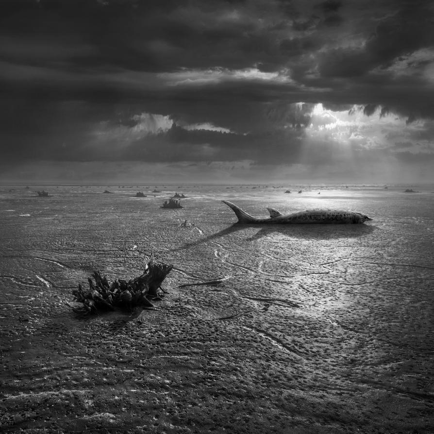 Deadsea by Kleemass