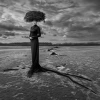 Empty Nest by Kleemass
