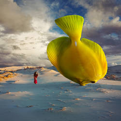 A Fish called Wanda by Kleemass