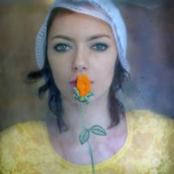 Rose by Kleemass