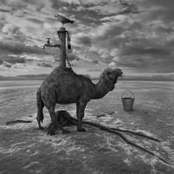 Wodopoj by Kleemass