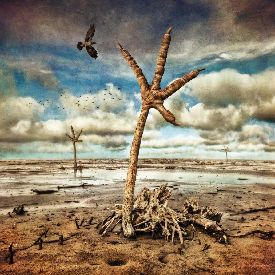 Wetlands by Kleemass