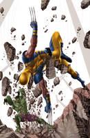 Hulk vs Wolverine by caiocacau