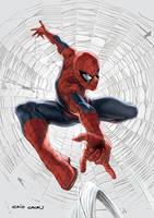 Spider-Man by caiocacau