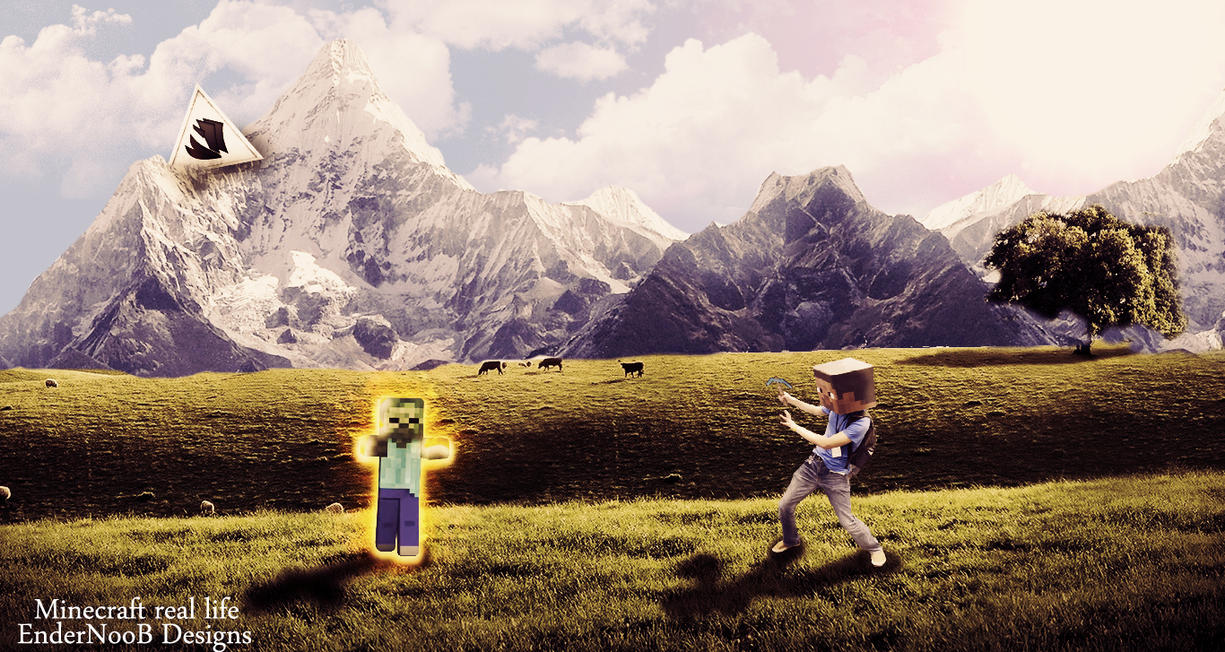 Popular Wallpaper Minecraft Real Life - minecraft_in_real_life_by_endernoobdesigns-d5gfev9  Best Photo Reference_539760.jpg