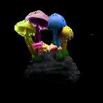 Accid mushrooms