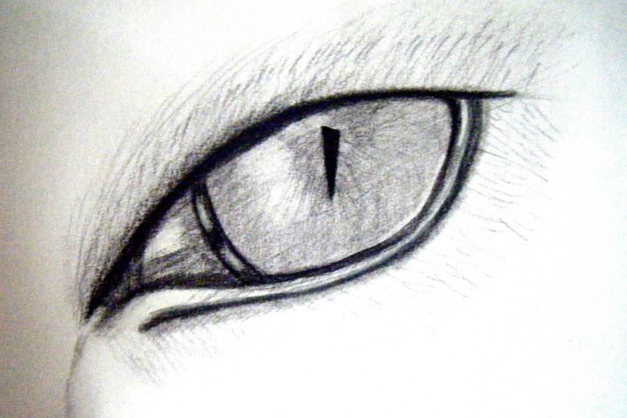 Cat eye sketch by izzycapricorn on DeviantArt