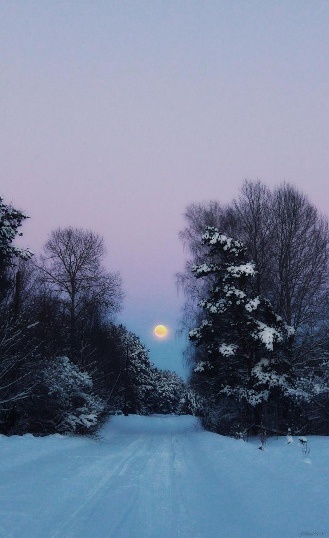 moon Dream by FokkusuNM