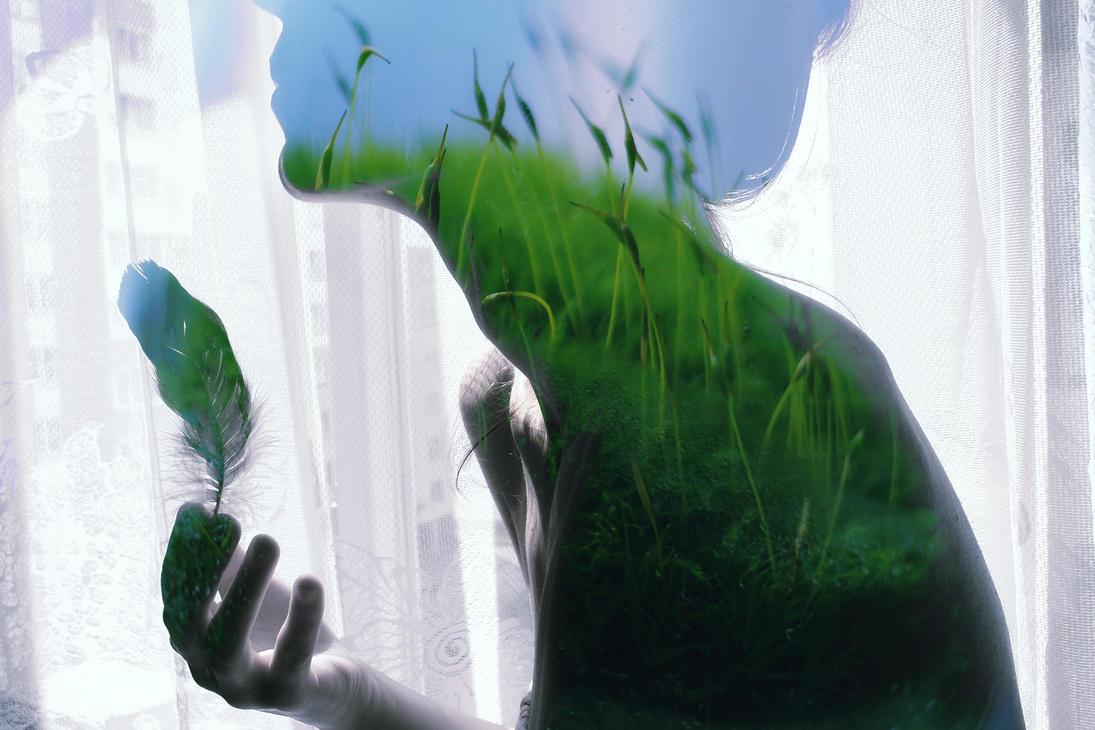 whispering of grasses by FokkusuNM