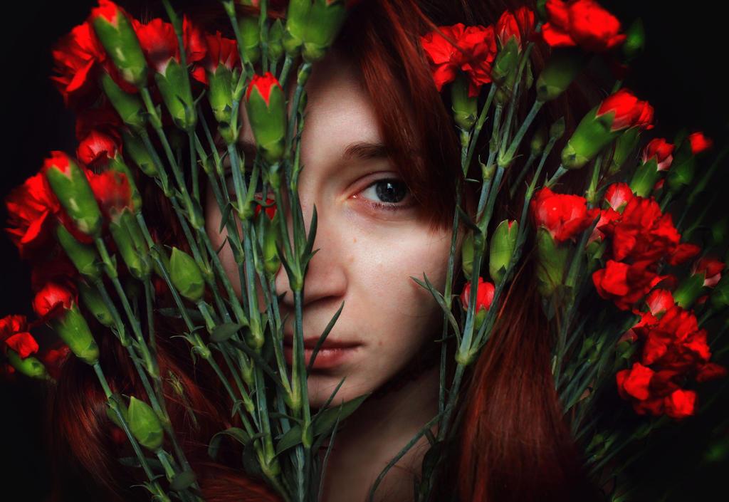 carnation by FokkusuNM