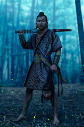 Dian warrior