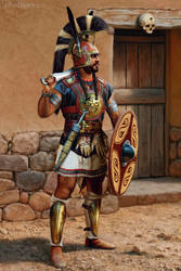 Iberian chieftain
