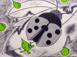 Lady bug by Holowood
