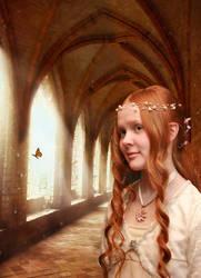 Amber Heart by Melanie-Howle-H