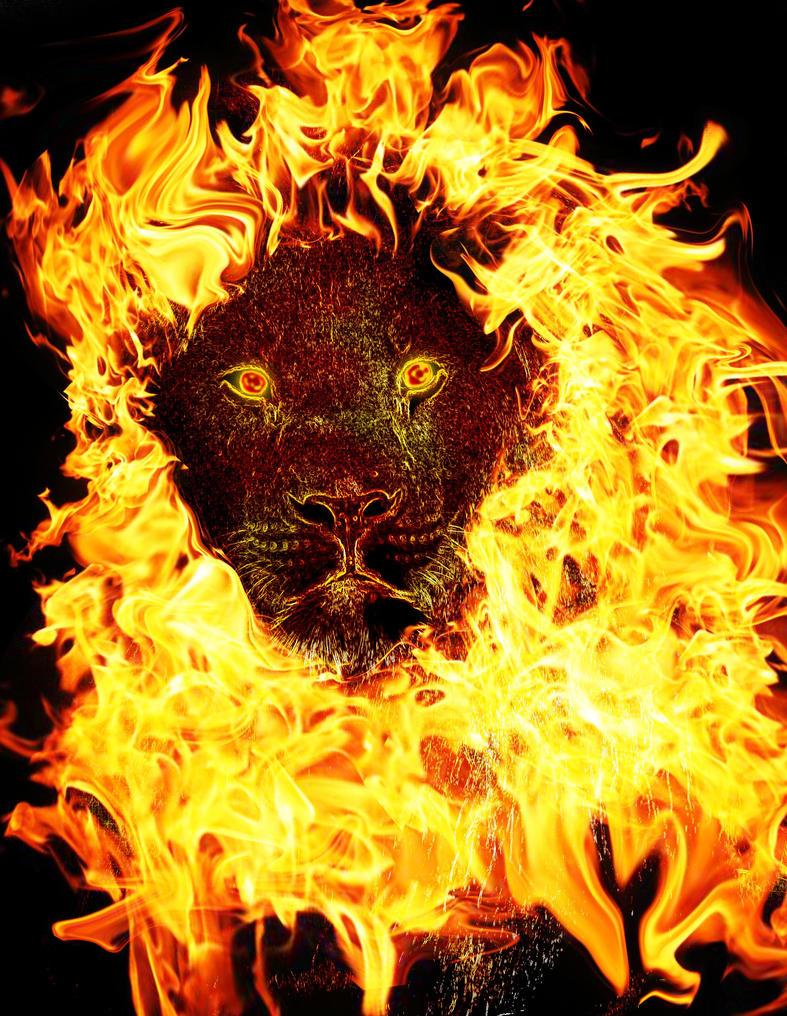 fire lion by crescentmoon19 on deviantart. Black Bedroom Furniture Sets. Home Design Ideas