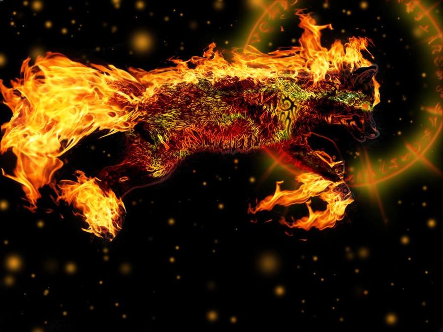 Magical Fire Fox by Crescentmoon19
