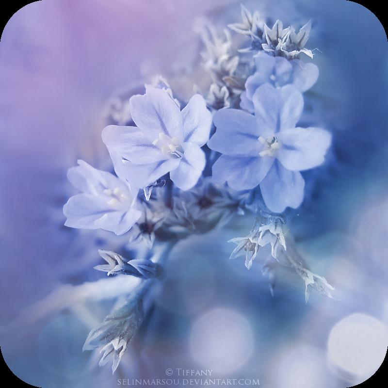 Fragile blueness by selinmarsou