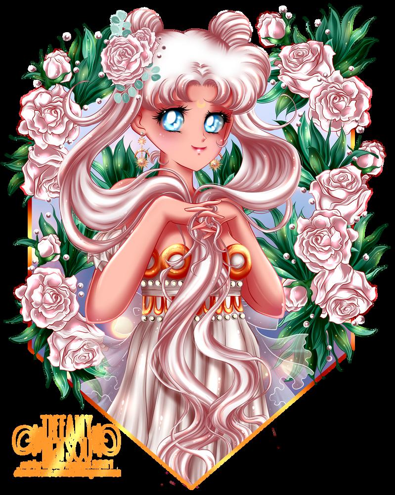 White Summer Roses