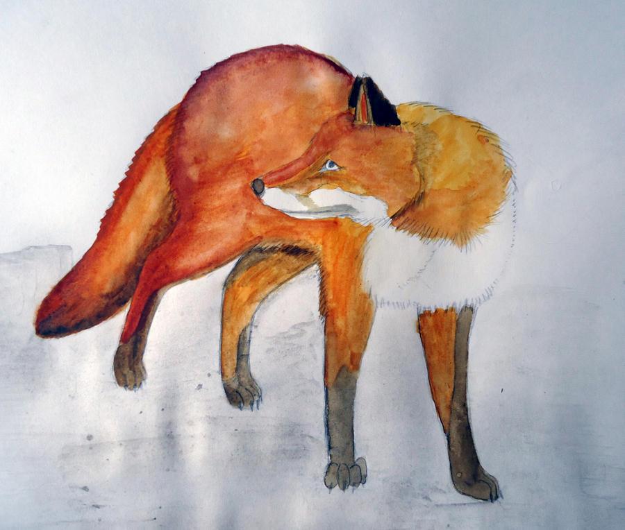 Autumn Fox by Chequer