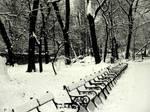 infinity winter