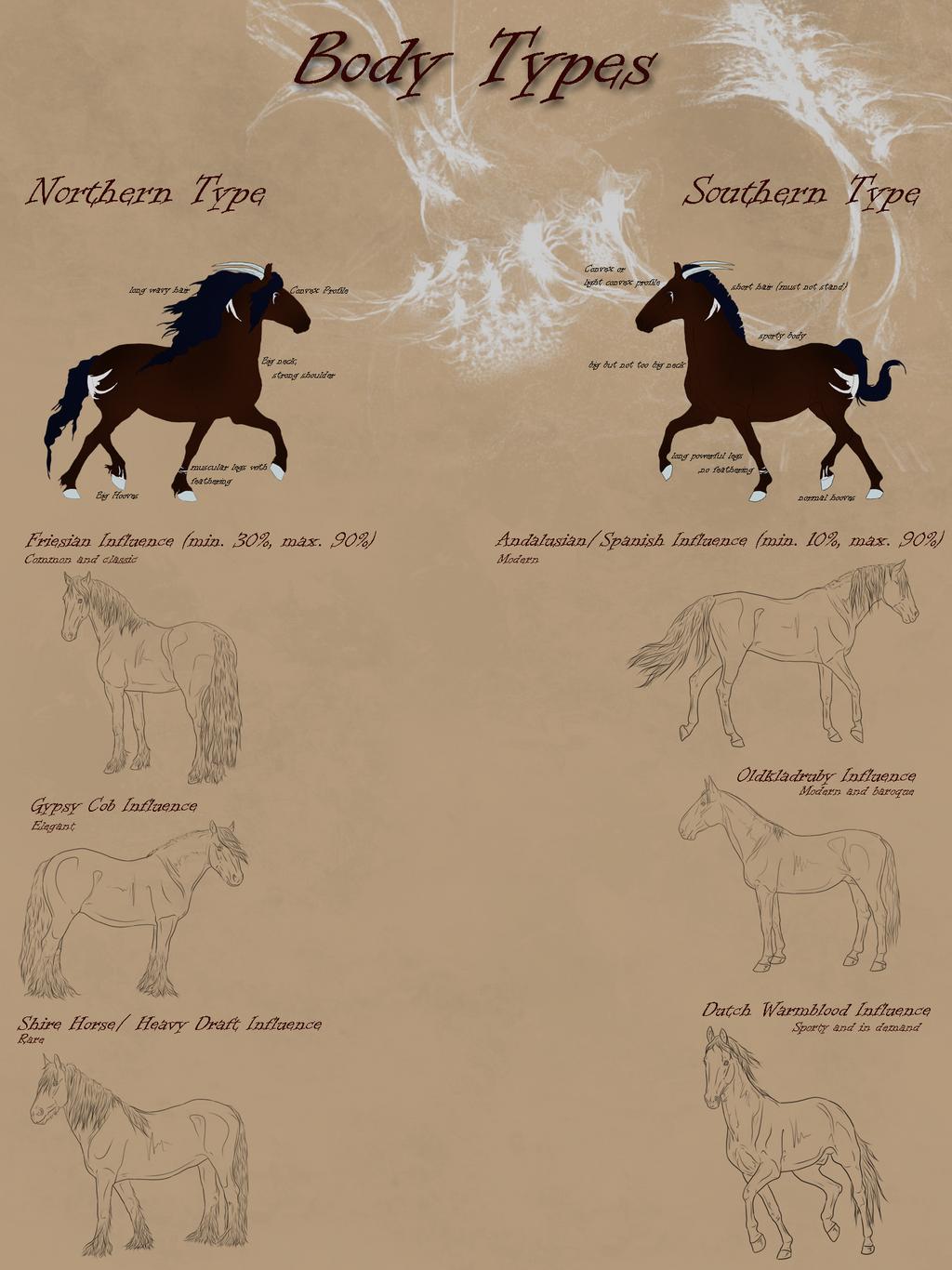 Dragonborn Horse_Body Types by CalyArt