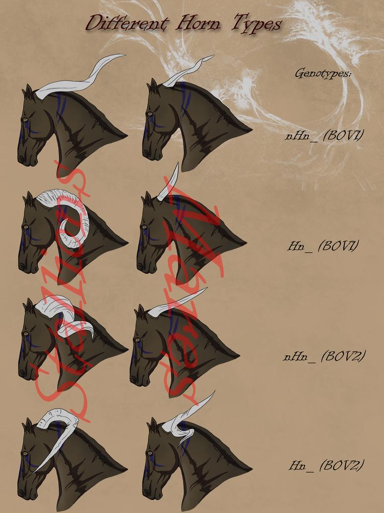 Dragonborn Horse_Horn Types by CalyArt